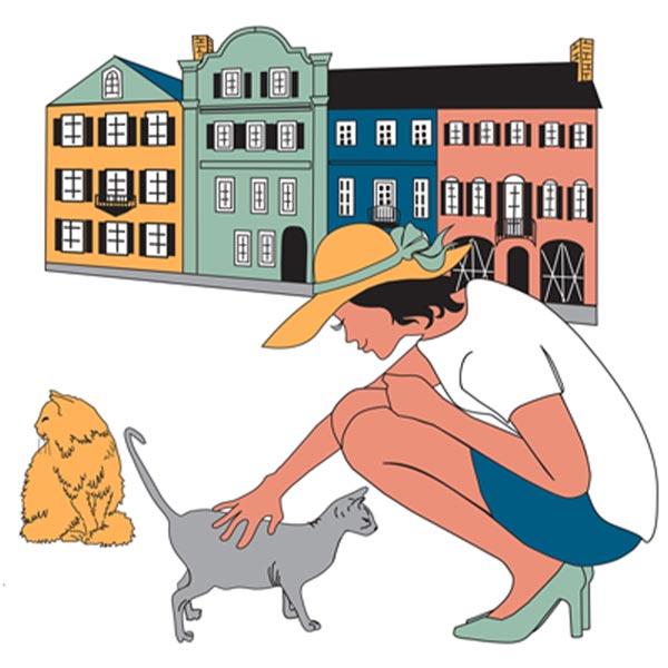 The Charleston Cat Groomer